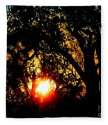 Creole Trail Sunset Fleece Blanket