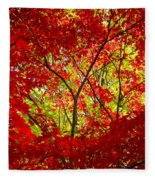 Crimson Window Fleece Blanket