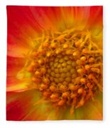 Dahlia Named Brian's Sun Fleece Blanket