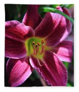Day Lily 2 Fleece Blanket