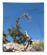 Dead Tree At Grand Canyon Fleece Blanket
