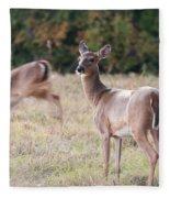 Deer At Paynes Prairie Fleece Blanket