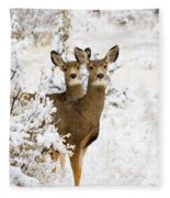 Doe Mule Deer In Snow Fleece Blanket