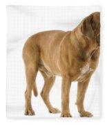 Dogue De Bordeaux Fleece Blanket