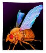 Drosophila Fleece Blanket