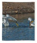 Egrets Robbing A Cormorant Fleece Blanket