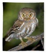 Elf Owl Fleece Blanket