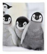 Emperor Penguin Chicks Fleece Blanket