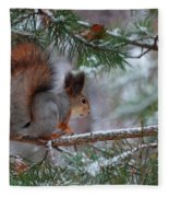 Eurasian Red Squirrel Fleece Blanket