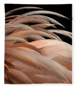 Fabulous Feathers Fleece Blanket