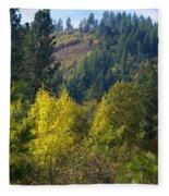 Fall In Spokane Fleece Blanket