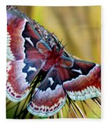 Female Promethea Moth Fleece Blanket
