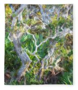 Florida Scrub Oaks Painted  Fleece Blanket