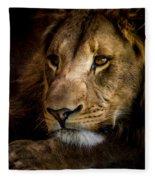 Focused Fleece Blanket