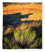 Fossil Beds And Grass Fleece Blanket