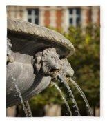 Fountain - Place Des Vosges Fleece Blanket