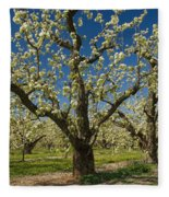 Fruit Orchard Fleece Blanket