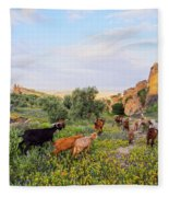Goats In Fes In Morocco Fleece Blanket