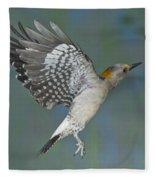 Golden-fronted Woodpecker Fleece Blanket