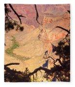 Grand Canyon 34 Fleece Blanket