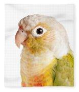 Green-cheeked Conure Pineapple P Fleece Blanket
