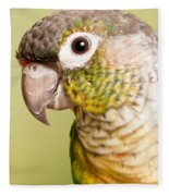 Green-cheeked Conure Pyrrhura Molinae Fleece Blanket