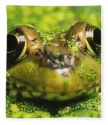 Green Frog Hiding In Duckweed Fleece Blanket