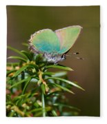 Green Hairstreak Fleece Blanket