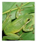 Green Tree Frog Fleece Blanket