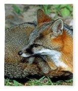 Grey Fox Fleece Blanket