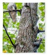 Hawk Hunting For A Squirrel On An Oak Tree Fleece Blanket