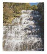 Hector Falls Fleece Blanket
