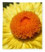 Helichrysum Bracteatum Named Strawburst Yellow Fleece Blanket