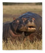Hippo Cow And Calf Fleece Blanket