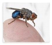 Human Botfly Belize Fleece Blanket