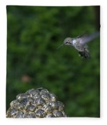 Humming Bird Fleece Blanket