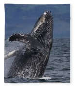 Humpback Whale Breaching Prince William Fleece Blanket
