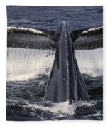 Humpback Whale Fluke Fleece Blanket