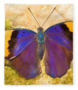 Indian Leaf Butterfly Fleece Blanket