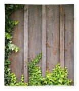 Ivy Wall Frame Fleece Blanket