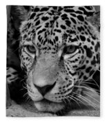 Jaguar In Black And White II Fleece Blanket