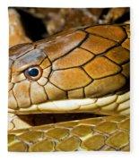 King Cobra Fleece Blanket