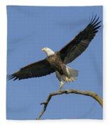 King Of The Sky 3 Fleece Blanket