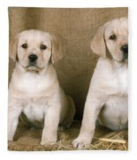 Labrador Retriever Puppies Fleece Blanket