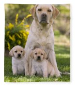 Labrador With Two Puppies Fleece Blanket