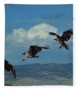 Landing Pattern Of The Osprey Fleece Blanket