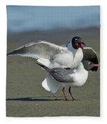 Laughing Gulls Fleece Blanket