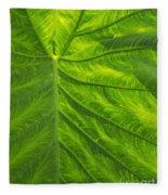 Leafy Green Fleece Blanket