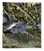 Least Grebe Fleece Blanket