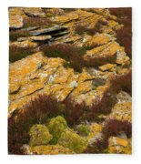 Lichened Rocks Fleece Blanket